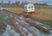 К нам не проехать: в Ивановской области односельчане на руках несли инвалида до соседней деревни
