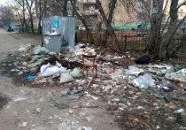 Мэру Шарыпову не до мусора: Ивановцы возмущены состояние контейнерных площадок